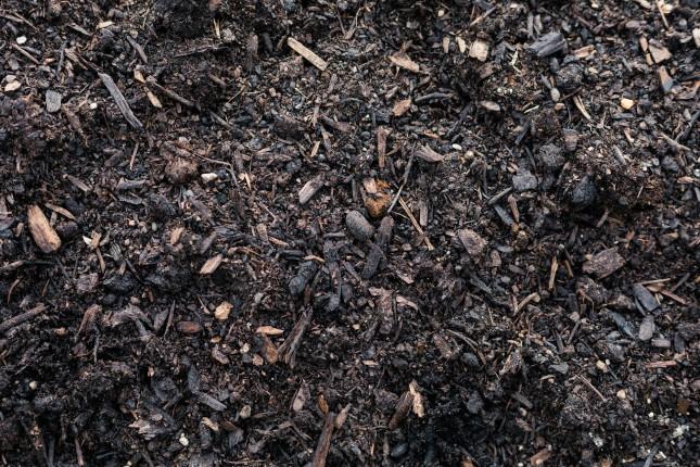 Soils & Conditioners
